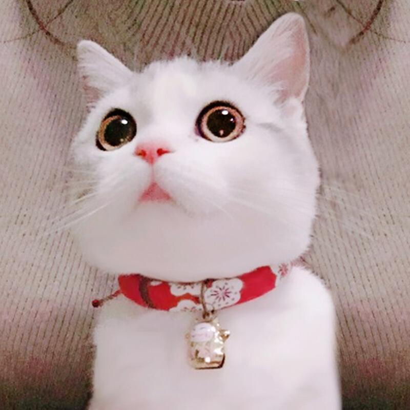日式和风手工猫项圈猫项链猫铃铛猫链