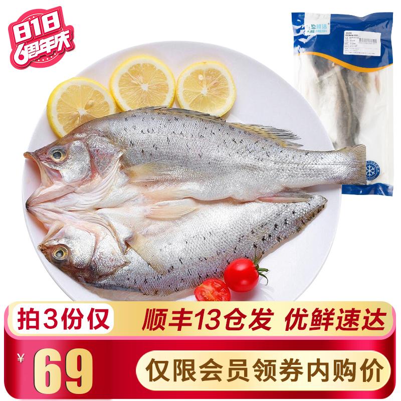 【拍三件69】品珍鲜活 三去海鲈鱼净重500~550g/条