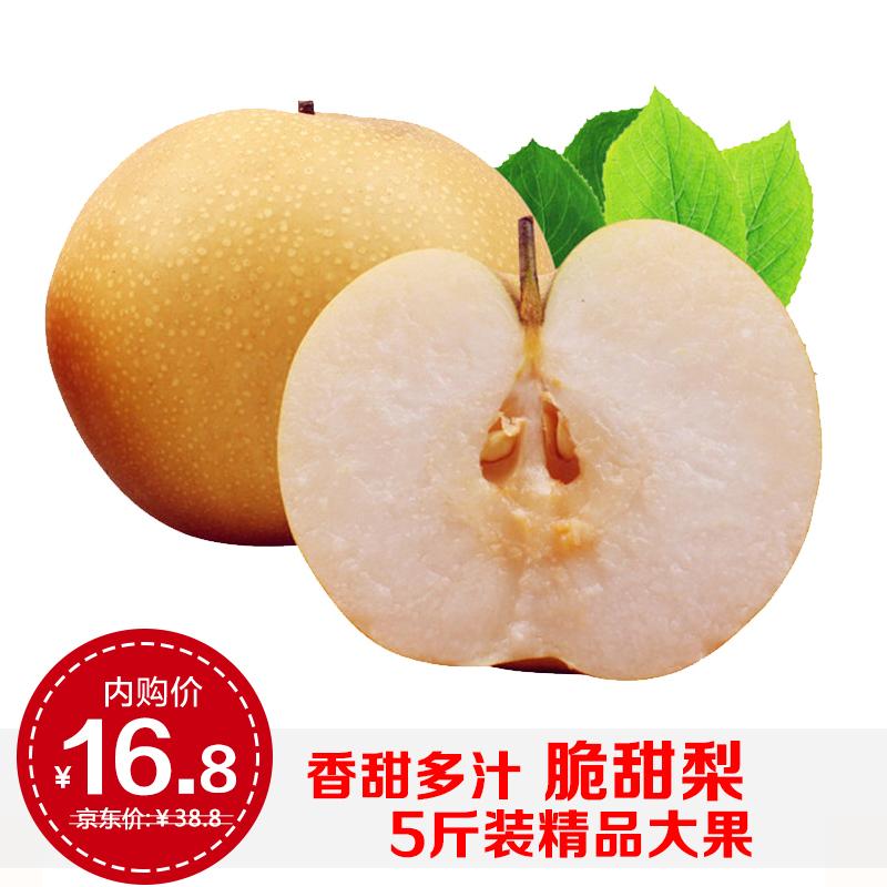【现摘现发】当季梨子新高梨5斤装