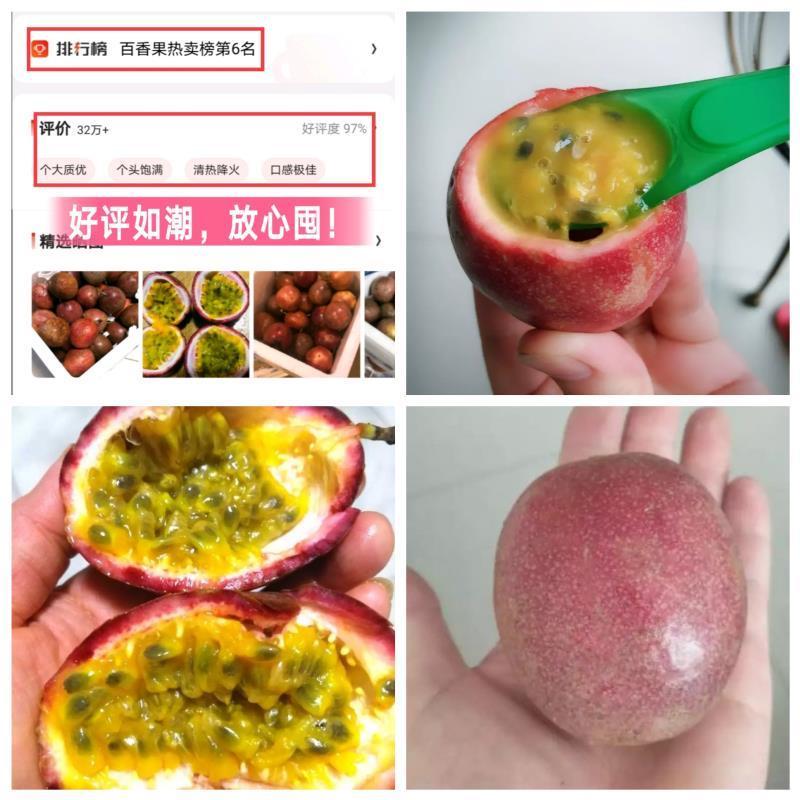 真食 广西百香果5斤 大果