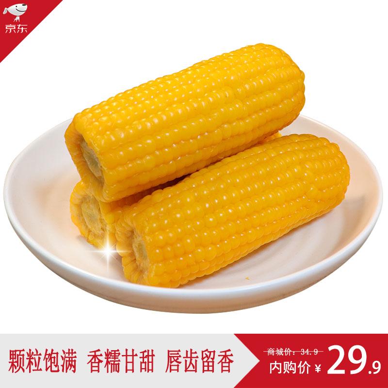 东北黄糯玉米棒220g*10支