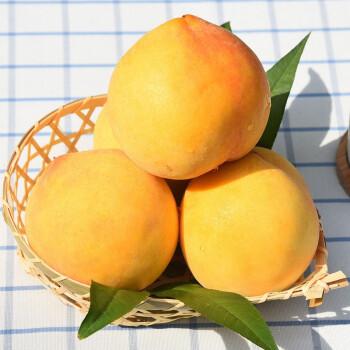 新鲜当季水果黄桃桃子毛桃 5斤